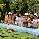 Поездка в ботанический сад